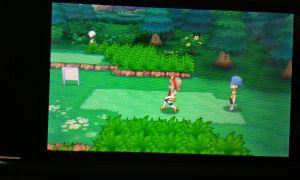 Während ich auf meiner Mission bin bemerke ich dass ich wohl besser bin als Sam Fisher. Wenn ich durch das Gras schleiche bemerken mich wilde Pokemon kaum...also SHHHHHHH!