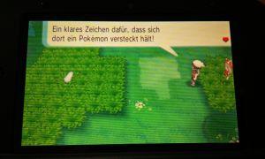 Kurz darauf wird mir erklärt, dass das Schleichen noch einen anderen Sinn hat. Und zwar den, unendlich versteckte Pokemon im hohen Gras zu finden, und mich ranzuschleichen.